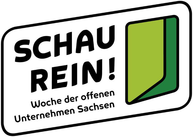 https://www.lausitz-branchen.de/medienarchiv/cms/upload/2016/september/SchauRein-Logo.jpg