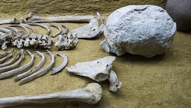 Notbergung von Skelette und Grabbeigaben