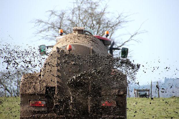 Bauernbund Brandenburg will die gesamte Düngeverordnung auf den Prüfstand stellen