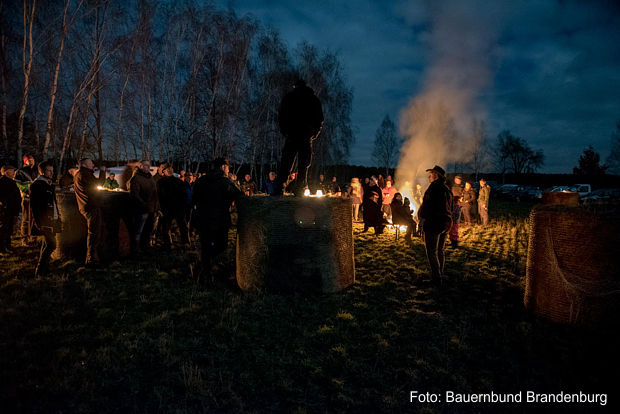 https://www.lausitz-branchen.de/medienarchiv/cms/upload/2017/maerz/Wolfswache-Dahme-Spreewald-Brandenburg.jpg