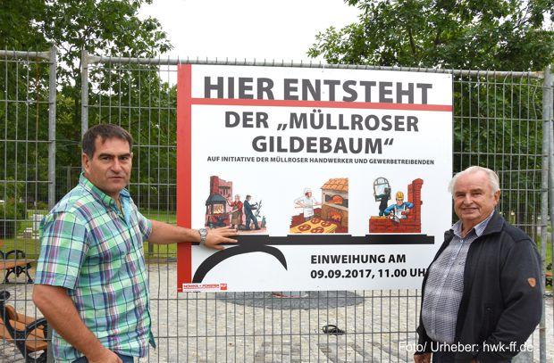 Gildebaum in Müllrose