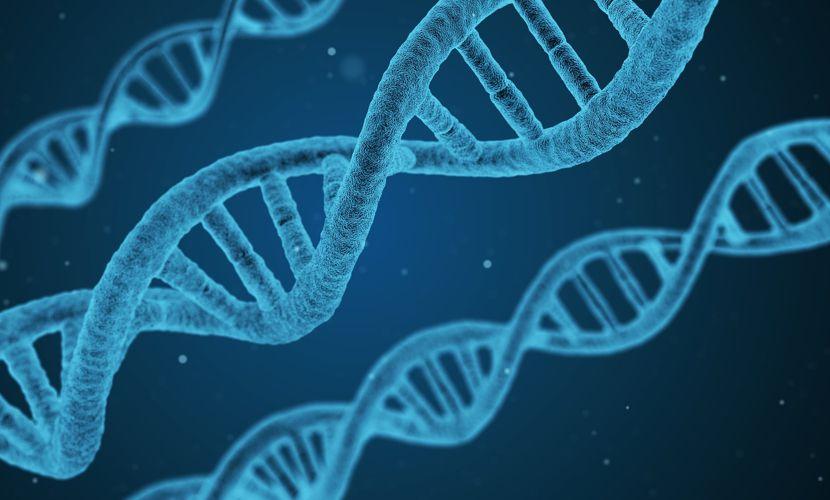 Bauernbund gegen Genomtechnik