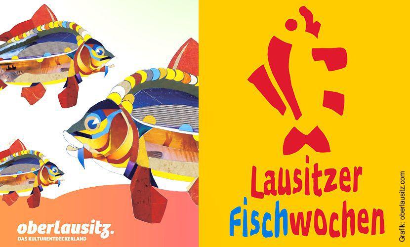 Lausitzer Fischwochen 2018