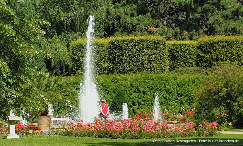Lottomittel für Ostdeutschen Rosengarten