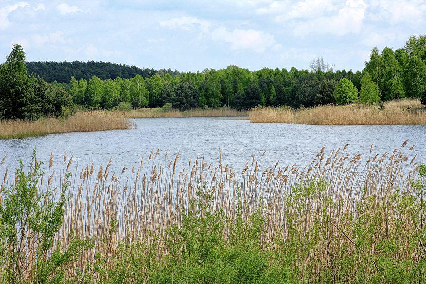 Informationsveranstaltung zur Stabilisierung der Wasserstände in Lausitzer Seen
