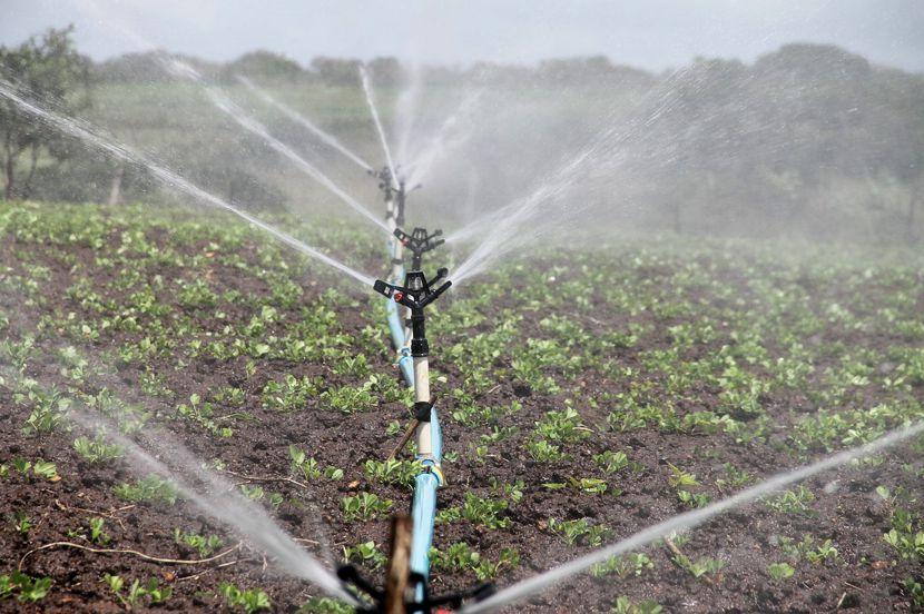 Wasserentnahmen im Spreewald eingeschränkt