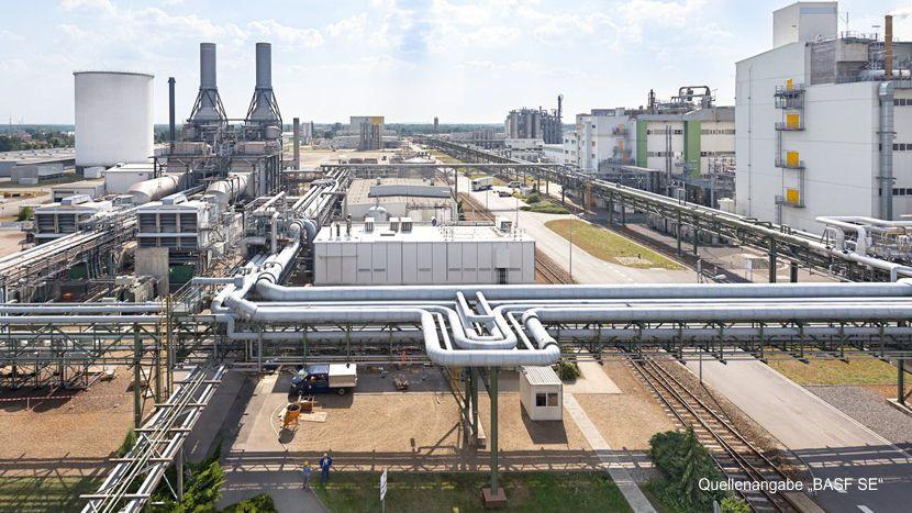 https://www.lausitz-branchen.de/medienarchiv/cms/upload/2019/september/investition-schwarzheide.jpg