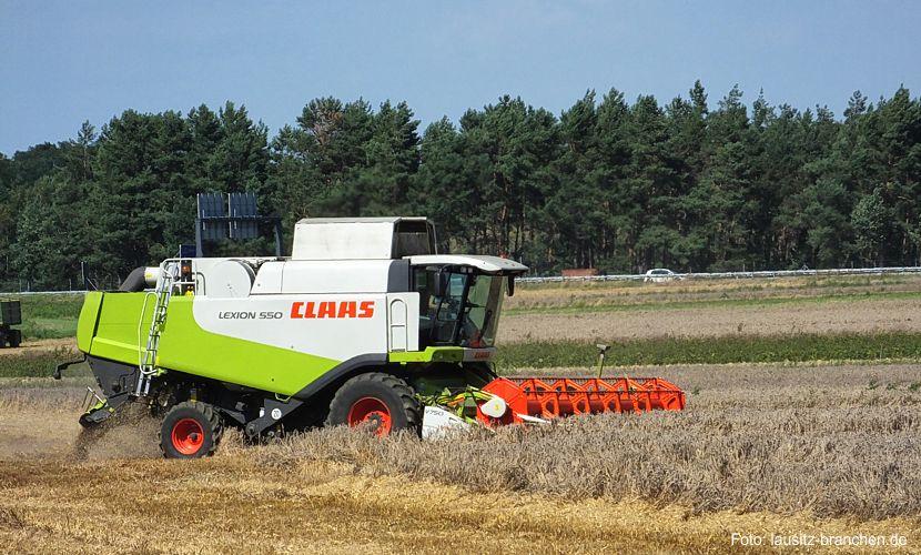 Bauernbund kritisiert DBV-Umgestaltungsträumen der Landwirtschaft