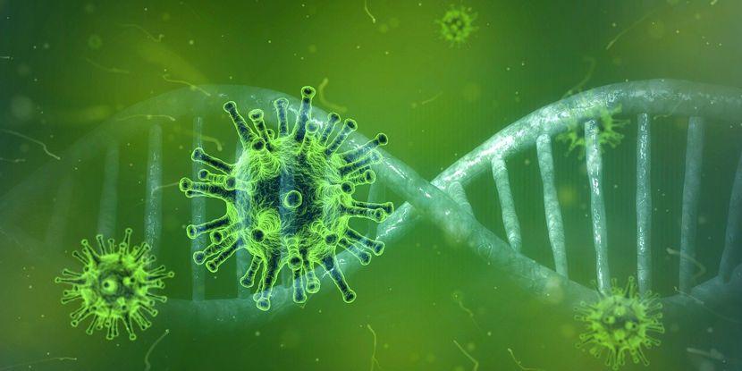 Corona-Abstriche und Antikörpertests im Lausitz MVZ Forst