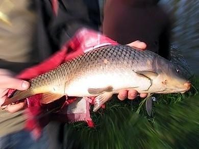 Erste Anglerprüfung 2012 im Landkreis Spree-Neiße