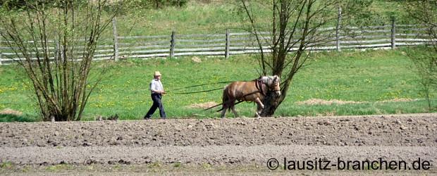 http://www.lausitz-branchen.de/medienarchiv/cms/upload/allgemein/bauer_landwirtschaft.jpg