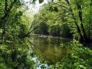 Startschuss für das *Wasserhaushaltsportal Sachsen*