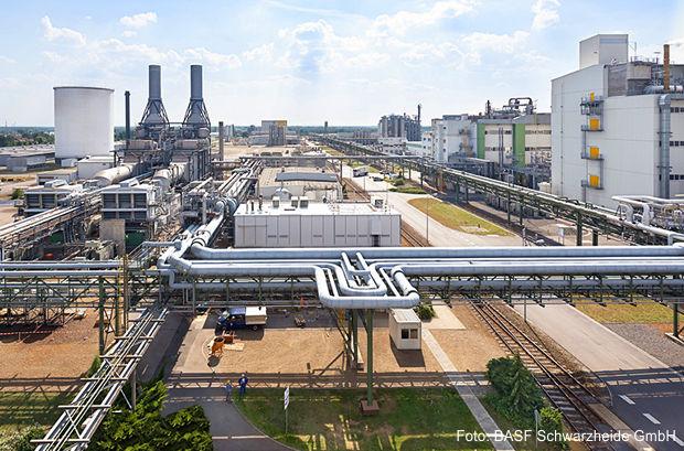 Geschäftsführung der BASF Schwarzheide wechselt