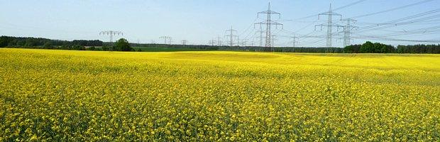 Kompetenzfeldanalyse für die Energieregion Lausitz