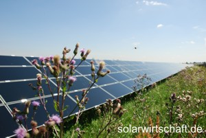 Photovoltaikanlage der Stadtwerke Finsterwalde