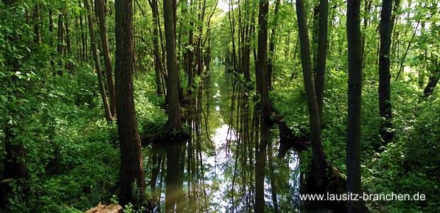 Sommerurlaub im Spreewald