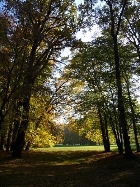 cottbus lausitz park